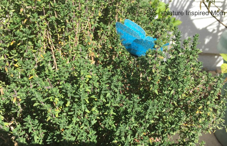 natureinspiredmom-herbs2